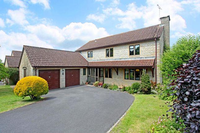 Thumbnail Detached house to rent in Cedar Fields, West Coker, Yeovil, Somerset