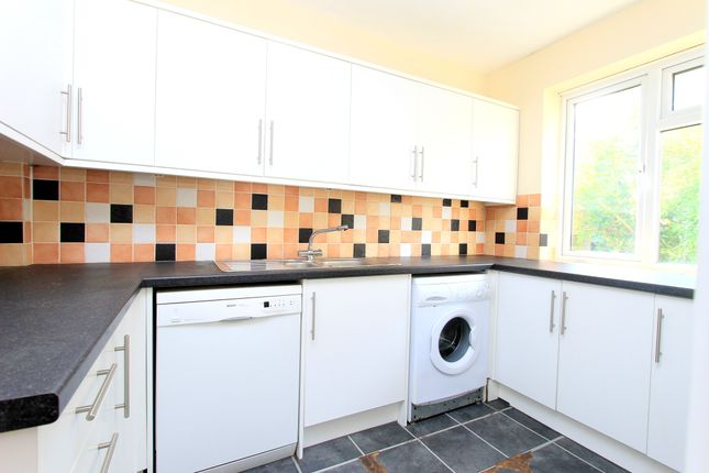 Thumbnail Country house to rent in Bevendean Crescent, Brighton