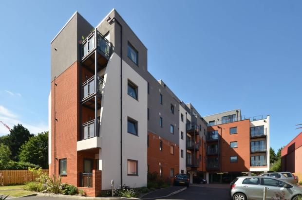 2 bed flat to rent in King Edwards Court, Walnut Tree Close GU1