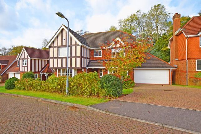 Thumbnail Detached house for sale in Littlewood Lane, Buxted