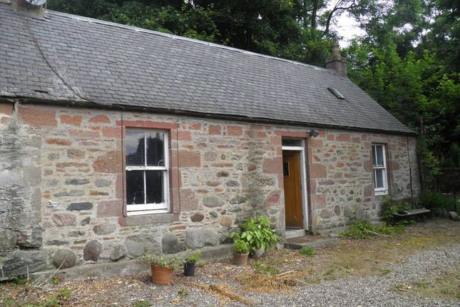 Thumbnail Detached house to rent in Gardens Cottage Deuchar Farm, Fern, Noranside, Forfar
