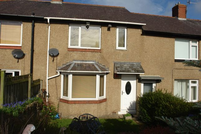 Thumbnail Terraced house to rent in Beech Grove South, Prudhoe