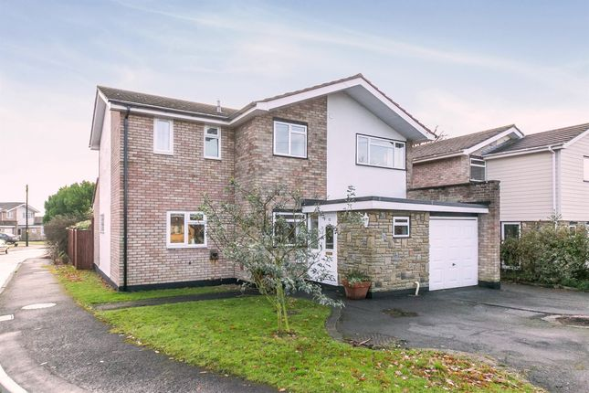 Thumbnail Detached house for sale in Catchpole Lane, Great Totham, Maldon