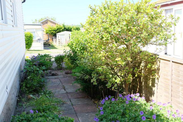 Side Walkway/Garden