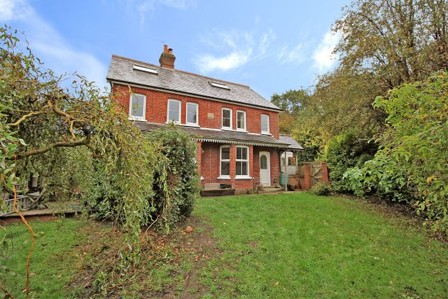 Thumbnail Detached house to rent in Kingsley Common, Kingsley, Bordon