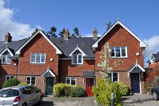 Thumbnail Terraced house to rent in Shortfield Common Road, Frensham, Farnham