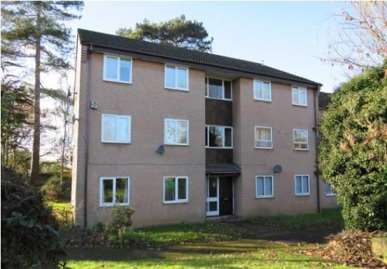 Thumbnail Flat to rent in The Oaks, Southampton