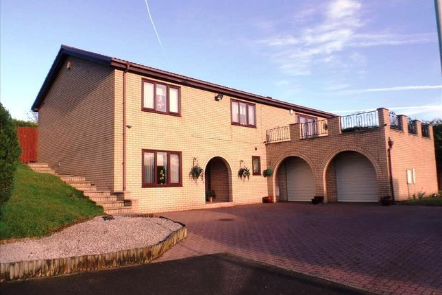 Thumbnail Detached house for sale in Witton Garth, Peterlee
