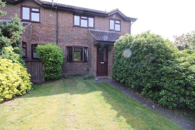 Thumbnail Semi-detached house to rent in Spruce Drive, Lightwater