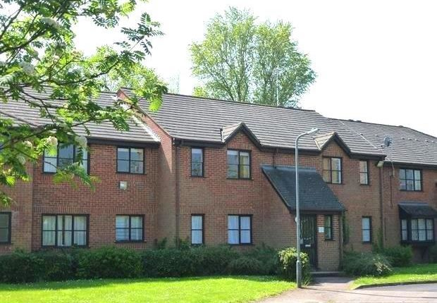1 bed flat to rent in Cranbrook, Woburn Sands, Milton Keynes MK17
