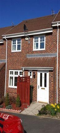 Thumbnail Property to rent in Mowbray Villas, South Shields