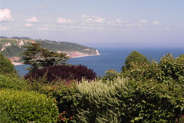 Thumbnail Detached bungalow for sale in Clinton Rise, Beer, Seaton, Devon