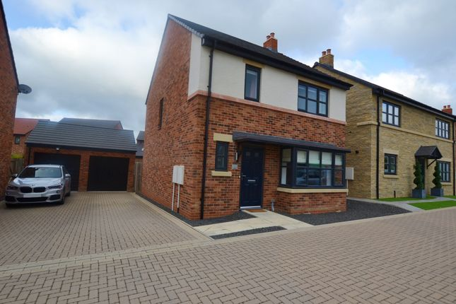Thumbnail Detached house for sale in Rede Place, Dinnington