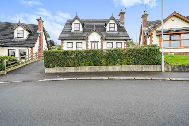 Thumbnail Detached house for sale in Chestnut Brae, Craigavon