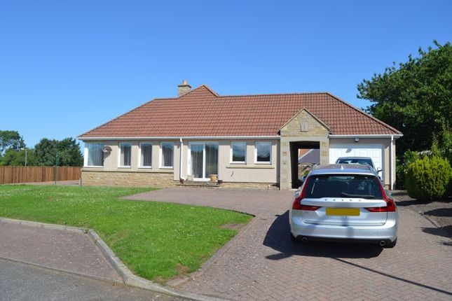 Thumbnail Detached bungalow for sale in East Ord Gardens, Berwick-Upon-Tweed