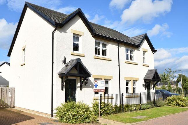 Thumbnail Semi-detached house to rent in Blackwood Murray Lane, Biggar