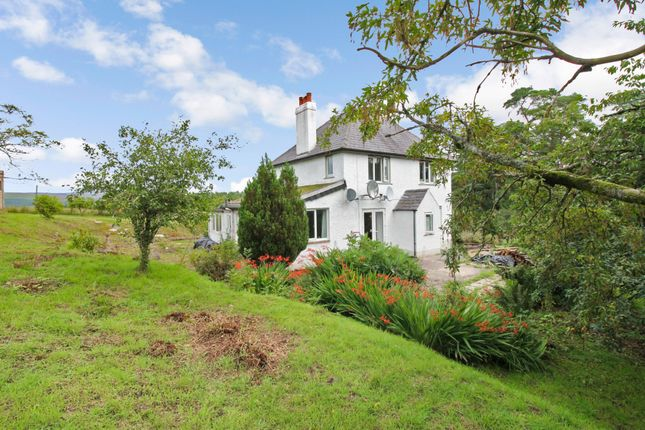 Thumbnail Detached house for sale in Newcastleton