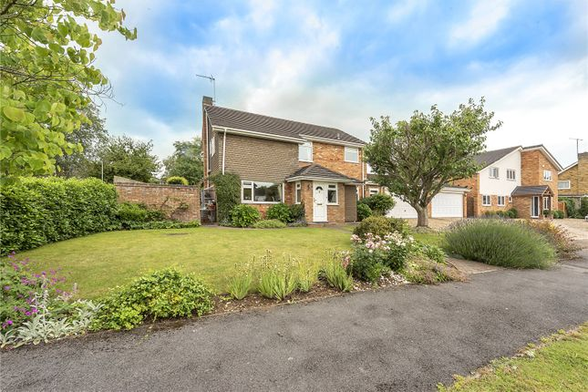 Thumbnail Detached house for sale in Netherfield Road, Harpenden, Hertfordshire