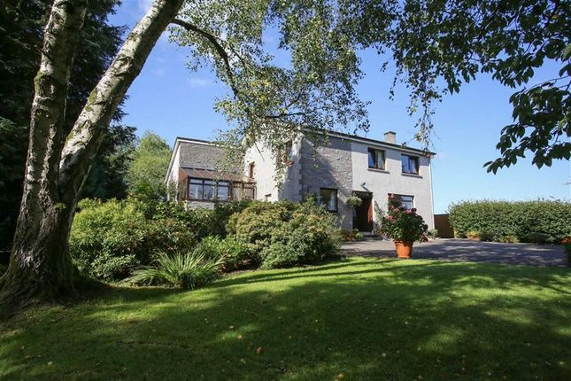 Thumbnail Detached house for sale in Dumfries