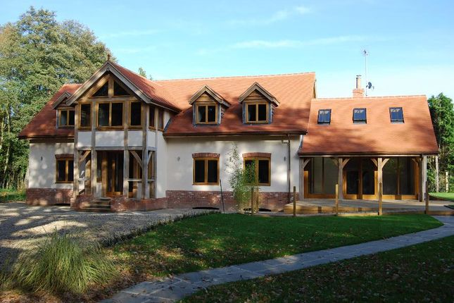 Thumbnail Detached house to rent in Chobham, Woking, Surrey