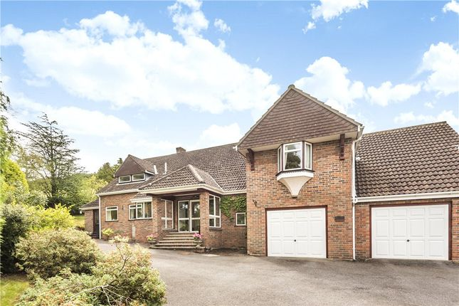 Thumbnail Detached house for sale in Blandford Road, Iwerne Minster, Blandford Forum