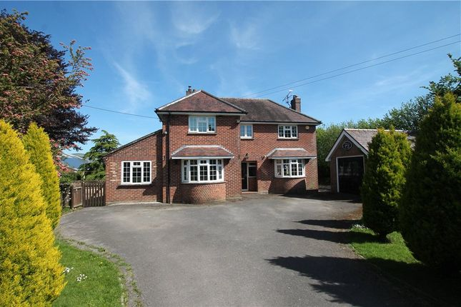 Thumbnail Detached house for sale in Back Lane, Kingston, Sturminster Newton, Dorset
