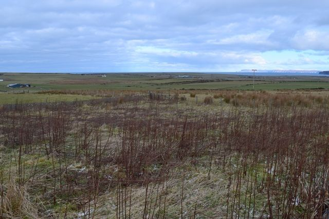 Land for sale in The Paddock, Mayfield, Weydale, Thurso