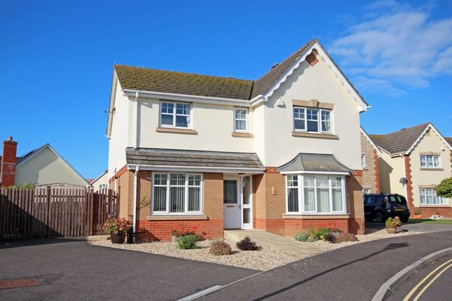 Thumbnail Detached house for sale in St. Clares Close, Seaton