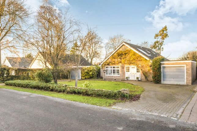 Thumbnail Detached bungalow for sale in Park Farm Lane, Nuthampstead, Royston