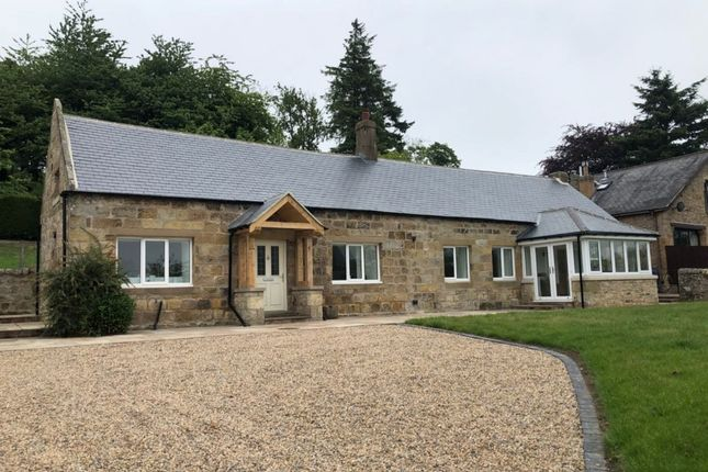 Thumbnail Detached bungalow to rent in Eglingham, Alnwick, Northumberland