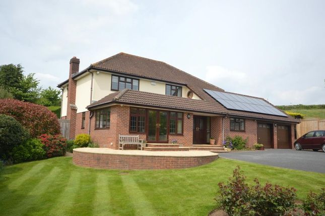 Thumbnail Detached house for sale in Wiggaton, Ottery St. Mary, Devon