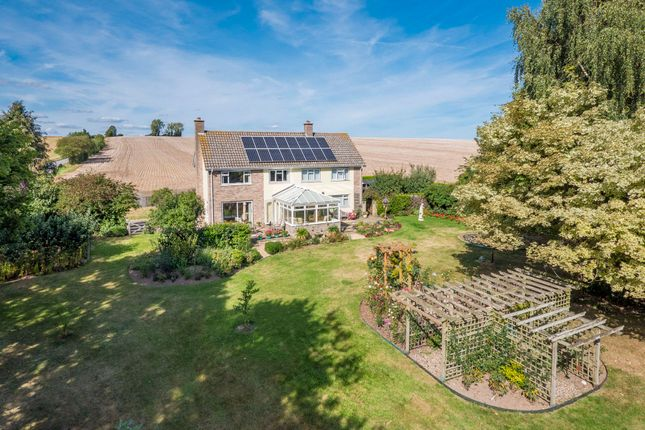 Hadleigh Ipswich Suffolk Ip7 5 Bedroom Detached House For Sale 52658341 Primelocation
