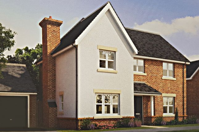 Thumbnail Detached House For Sale In Sun Park Farnborough