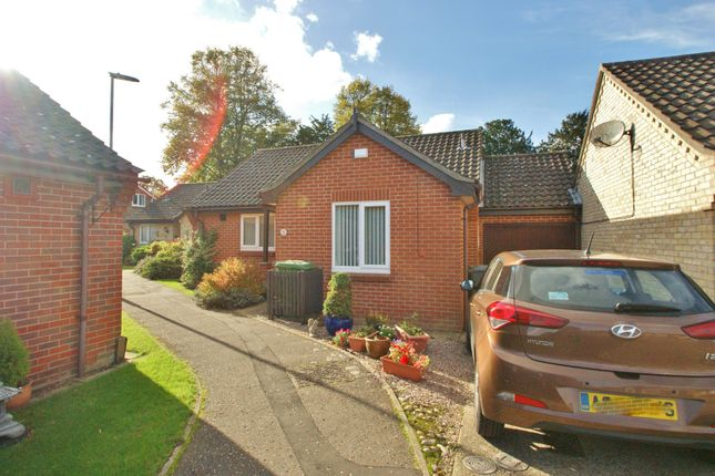 Thumbnail Detached bungalow for sale in Catton Court, St. Faiths Road, Old Catton, Norwich