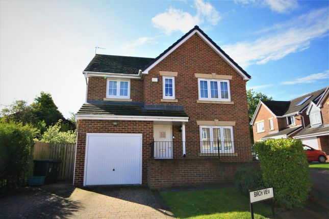 Thumbnail Detached house for sale in Birch View, Chester Le Street