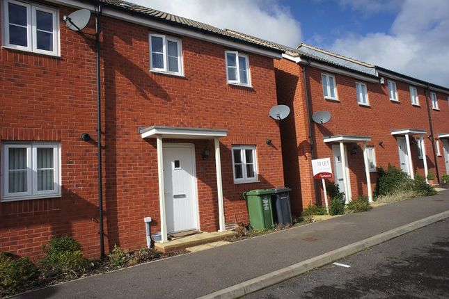 Thumbnail Terraced house to rent in Resolution Road, Exeter