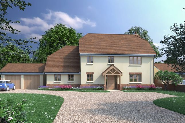 Thumbnail Detached house for sale in Hoe Lane, Nazeing, Essex