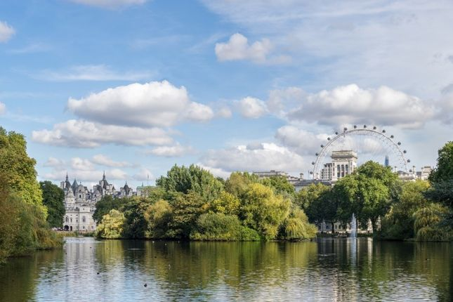 Thumbnail Flat to rent in Buckingham Gate, St James's