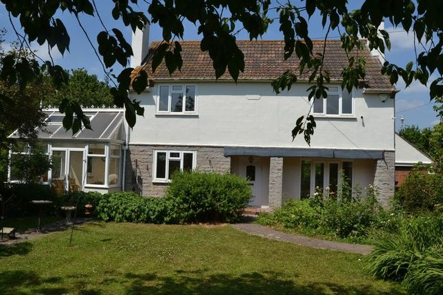 Thumbnail Detached house to rent in Ashmoor Drove, Wookey, Wells