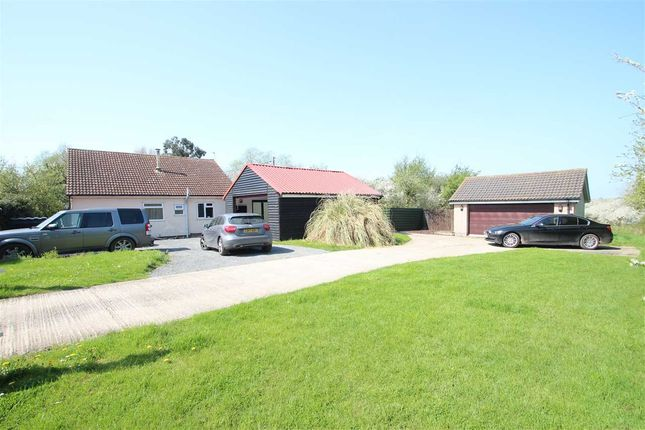 Thumbnail Bungalow for sale in Outspan, Dairy Farm Meadow, St Osyth