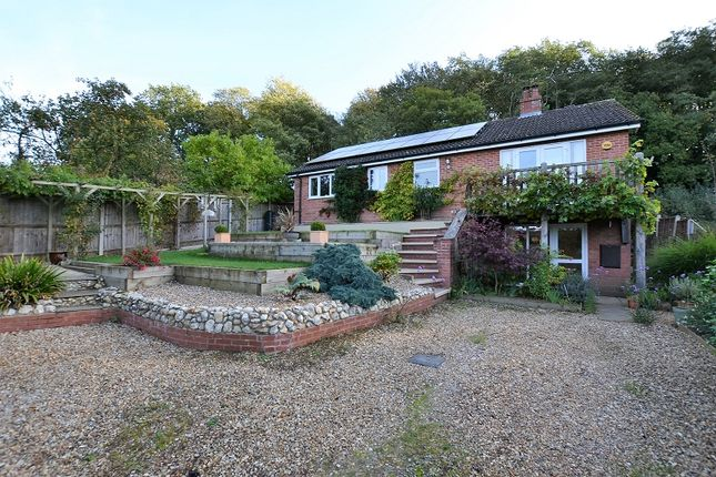 Thumbnail Detached house for sale in Rectory Road, Elsing, Dereham, Norfolk.