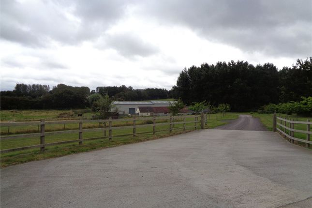 Thumbnail Light industrial to let in West Street, South Petherton, Somerset