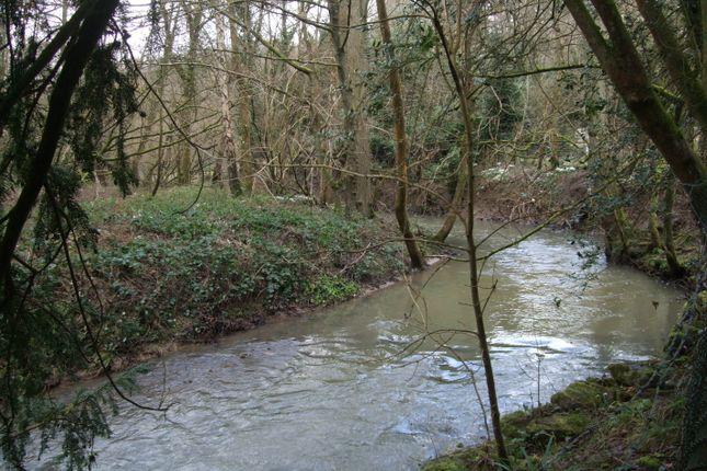 Dowles Brook Fishing
