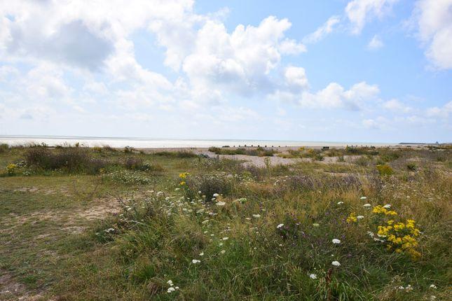 Beach of Martello Court, Pevensey Bay BN24
