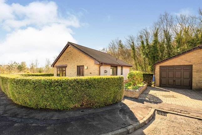 Thumbnail Bungalow for sale in Summerford Gardens, Falkirk, Stirlingshire