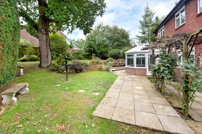 Thumbnail Detached house to rent in The Boundary, Langton Green, Tunbridge Wells