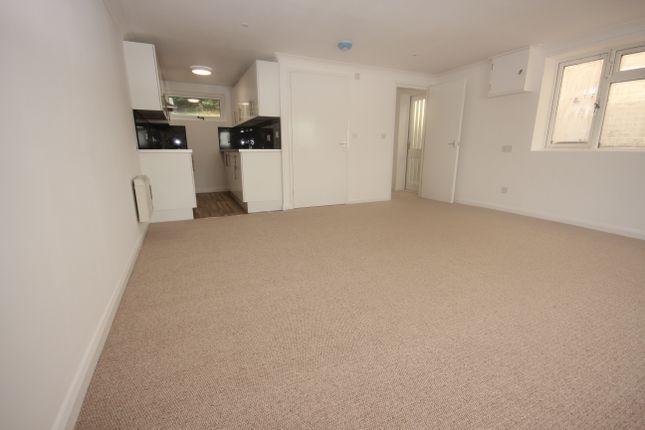 Annex Living Room/Kitchen