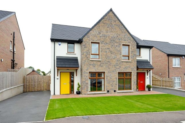 Thumbnail Semi-detached house for sale in Copper Green, Green Road, Conlig