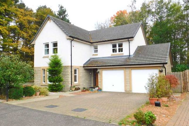 Thumbnail Detached house for sale in Claudius Crescent, Cambuslang, Glasgow