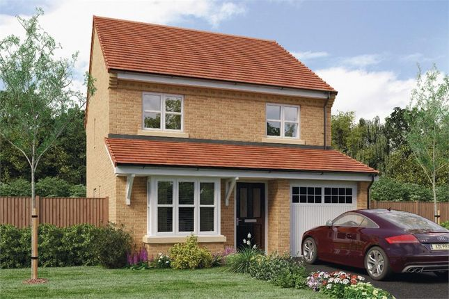 "Thumbnail Detached house for sale in ""Hallam"" at Leeds Road, Thorpe Willoughby, Selby"